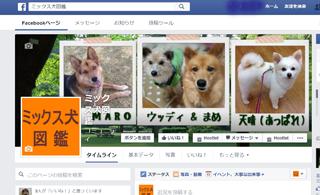 ミックス犬図鑑Facebook